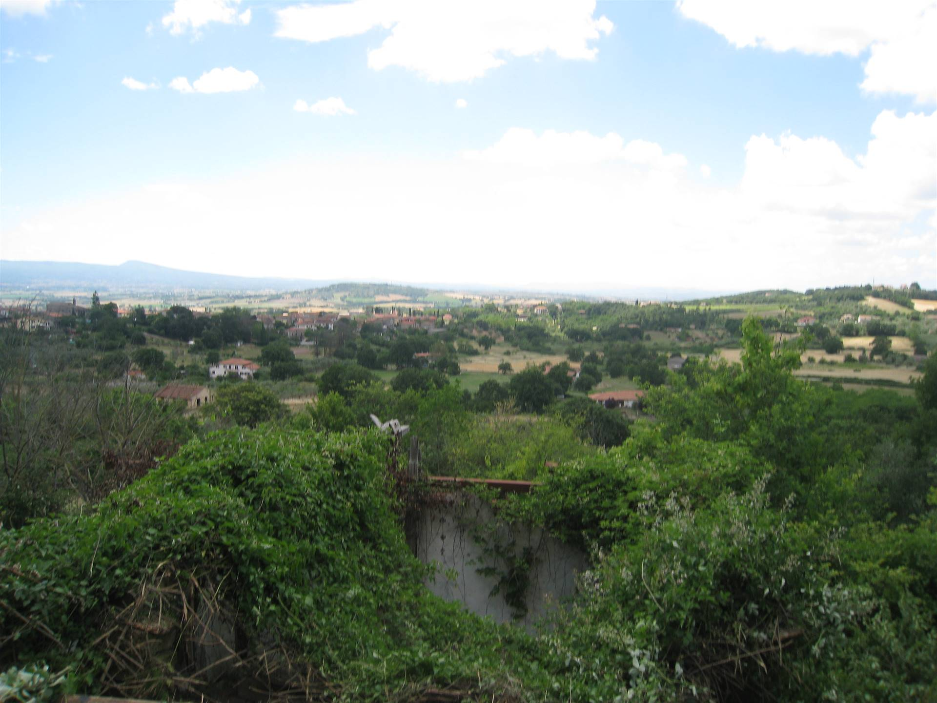 Building plot of land in MONTEFIASCONE