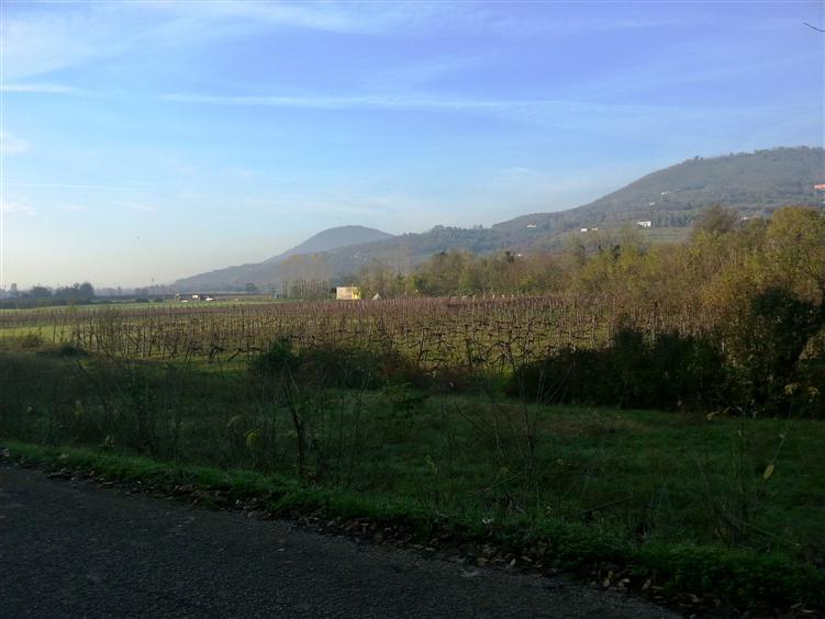 Rustico casale, Valle San Giorgio, Baone, in nuova costruzione