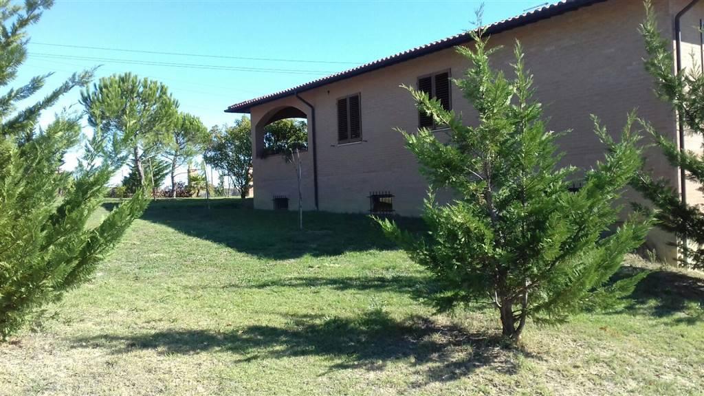 Rustico casale, Periferia, Siena, in nuova costruzione