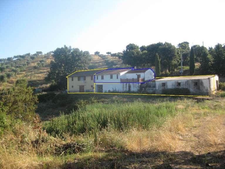 Azienda agricola a CIVITELLA PAGANICO