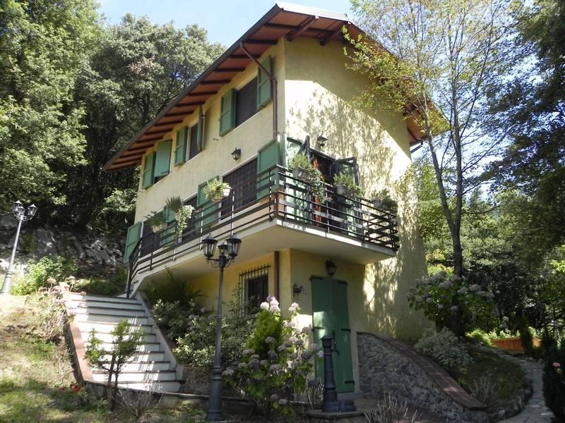 Rustico casale, Camaiore, in ottime condizioni