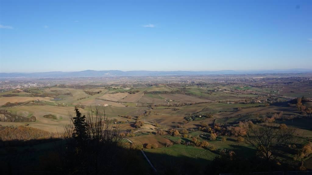 Vista panoramica Panoramic views