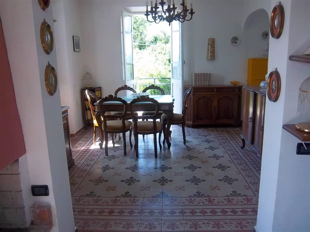 Casa semi indipendente, Montedivalli, Podenzana, abitabile