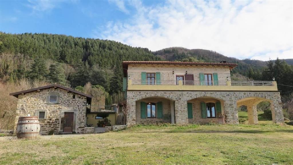 Rustico / Casale in Vendita a Fivizzano