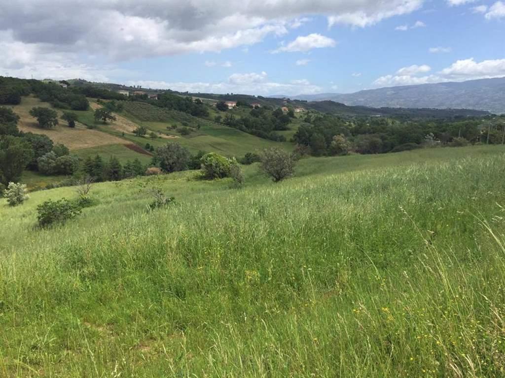 Terreno Agricolo in vendita a Rende, 9999 locali, zona Località: SANTO STEFANO DI RENDE, prezzo € 77.500 | CambioCasa.it