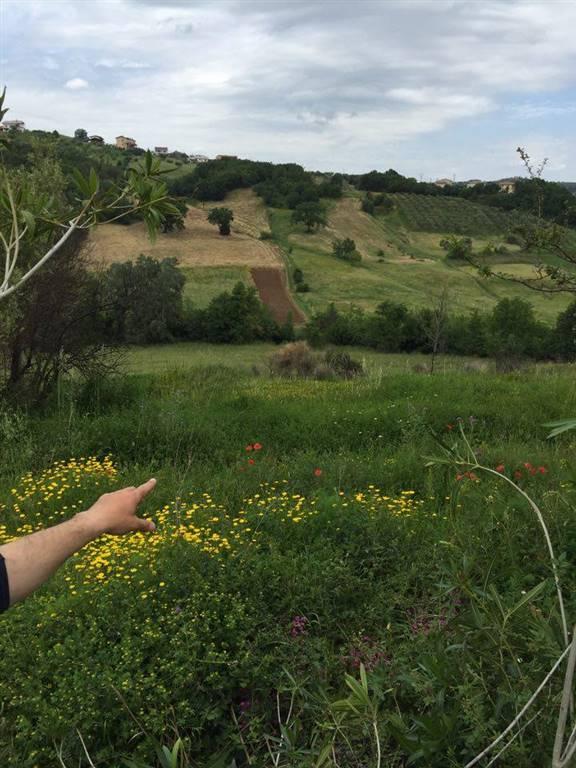 Terreno Agricolo in vendita a Rende, 9999 locali, zona Località: SANTO STEFANO DI RENDE, prezzo € 190.000 | CambioCasa.it