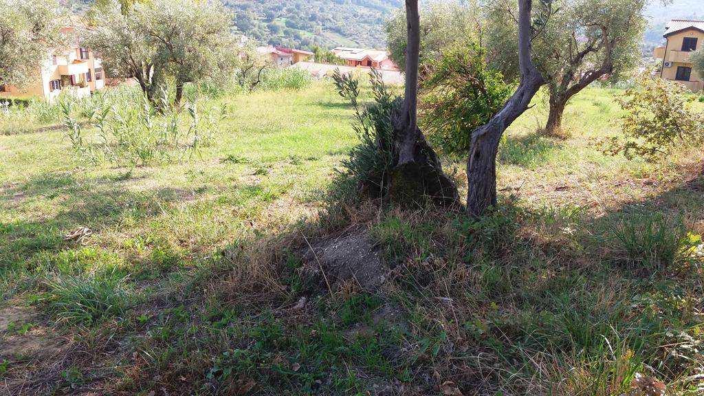 Terreno edificabile, Di Pasquali, Mendicino