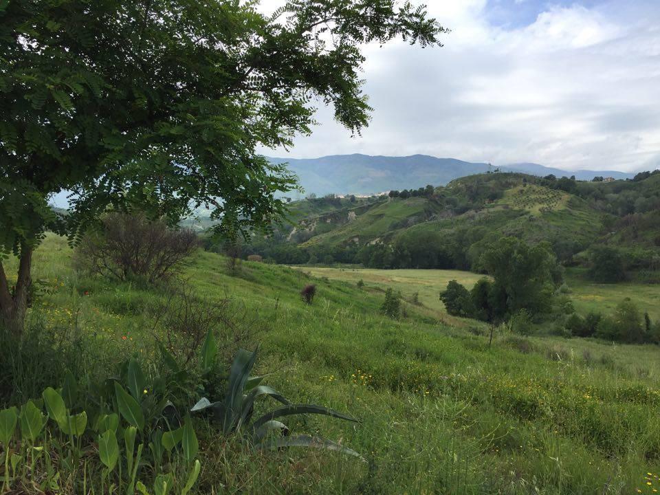 Terreno agricolo in Cucchiano, Rende