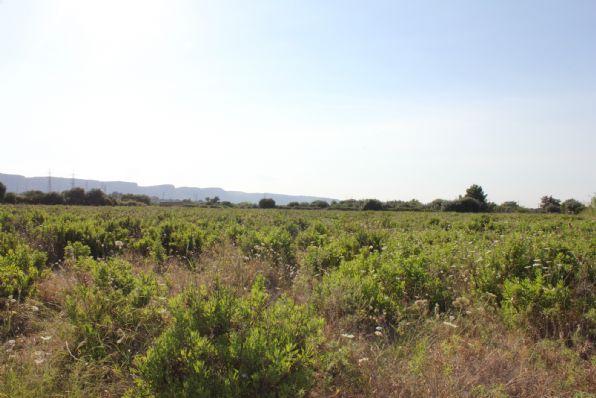 Terreno Edificabile Comm.le/Ind.le in vendita a Priolo Gargallo, 9999 locali, Trattative riservate | CambioCasa.it