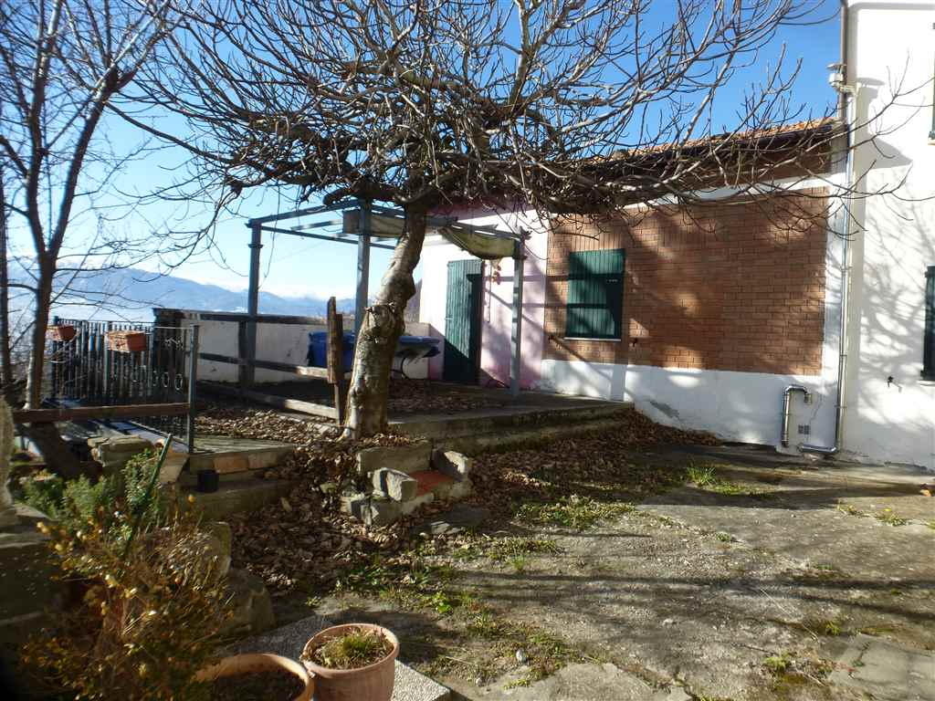 Casa semi indipendente, Carpineti, abitabile