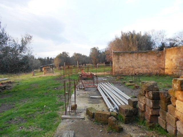 Azienda agricola, Tuscania