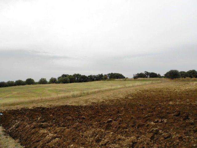Terreno agricolo, Tuscania
