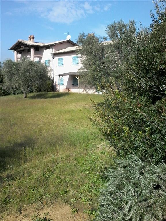 Rustico casale in Località Belvedere Snc, Pescia Romana, Montalto Di Castro