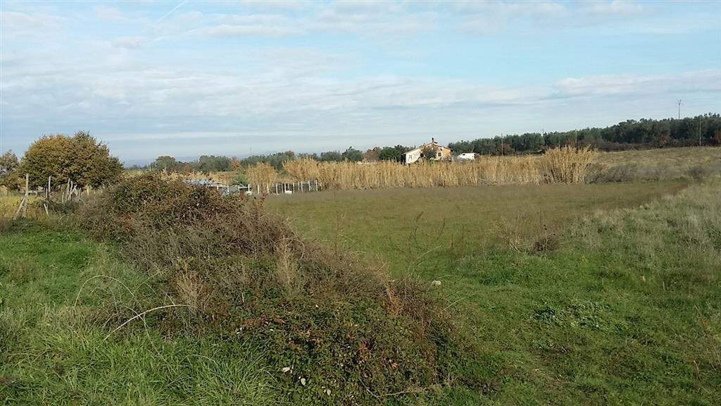 Terreni agricoli viterbo in vendita e in affitto cerco - Diritto di passaggio su terreno agricolo ...