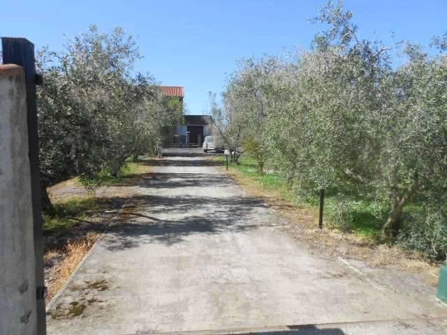 Rustico casale, Tuscania