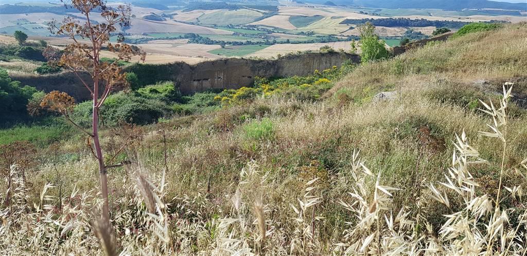 Terreno agricolo, Tarquinia