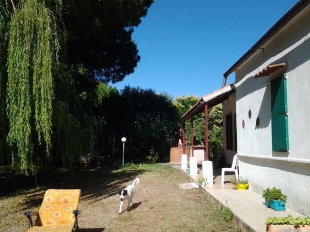 Villino, Pineta Spinicci, Tarquinia, abitabile