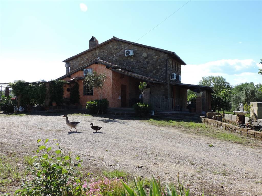 Casa singola, Periferia, Viterbo