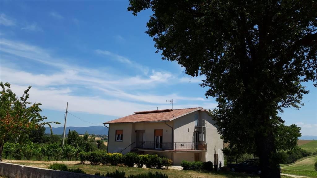 Casa singola, Montecastrilli, ristrutturata