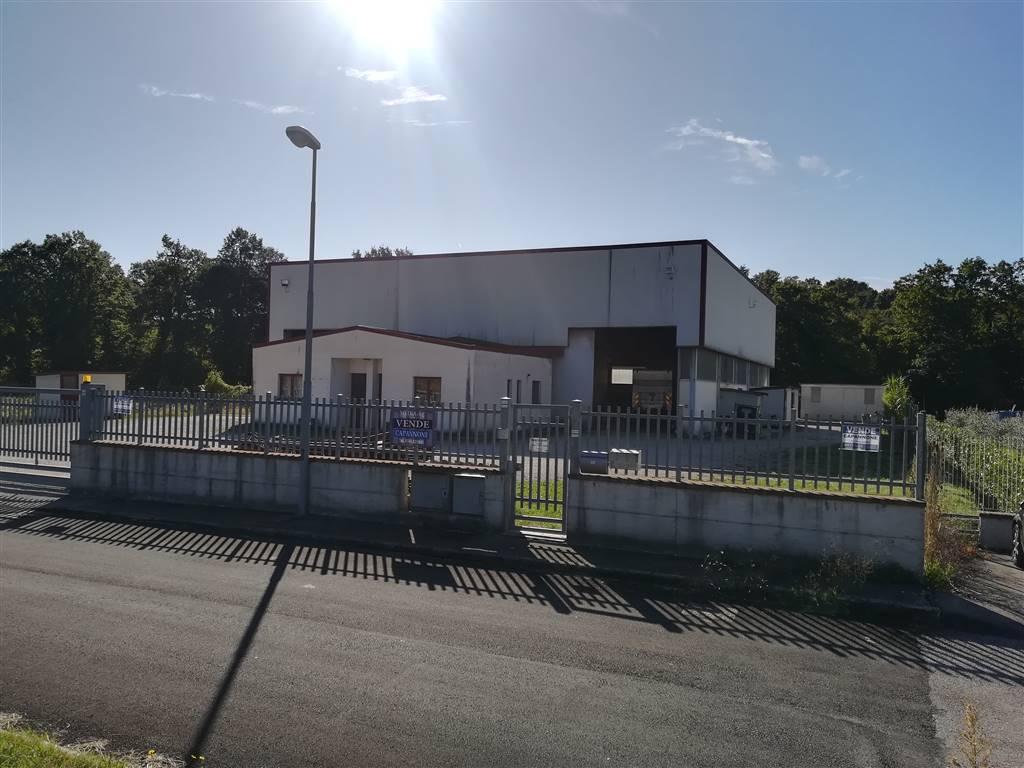 Capannone industriale in Vocabolo Rena 87, Avigliano Umbro