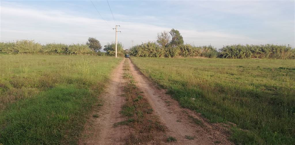 terreno in vendita a tuscania