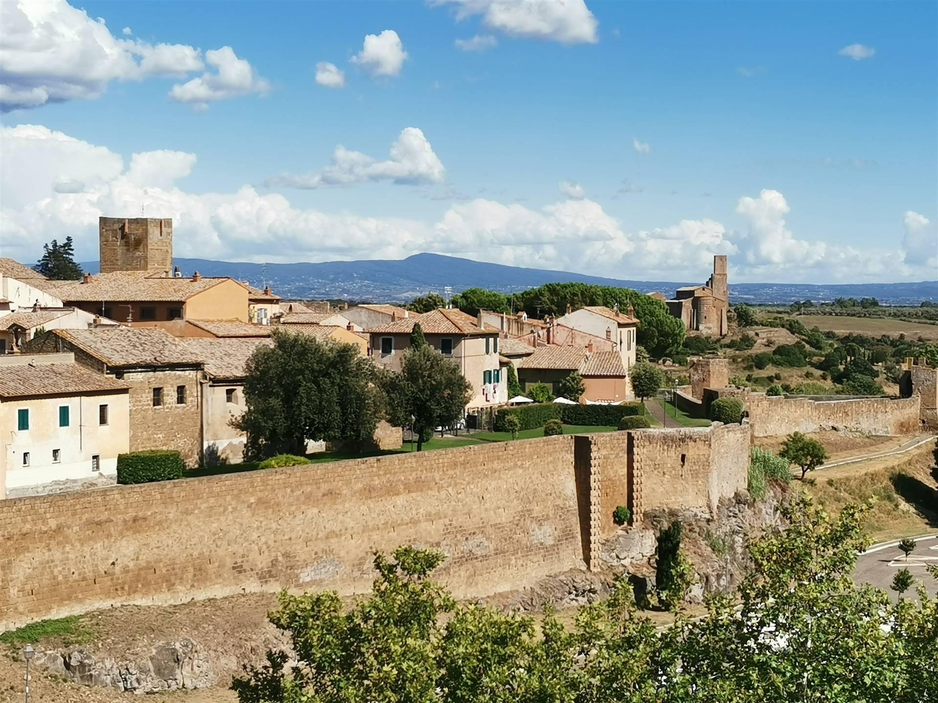 Appartamento in vendita a Tuscania, 5 locali, prezzo € 138.000 | PortaleAgenzieImmobiliari.it