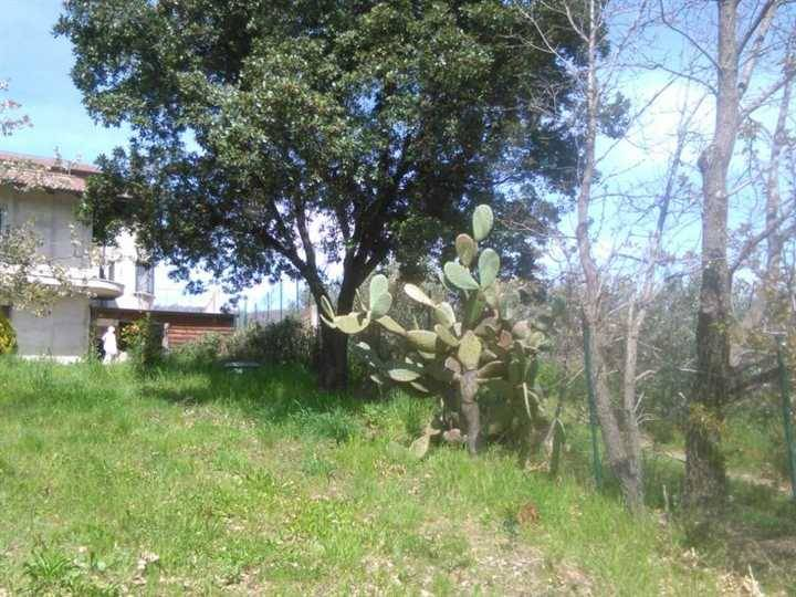 Villa, Lamezia Terme, in ottime condizioni