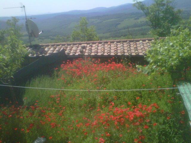 Soluzione Indipendente in vendita a Castelnuovo di Val di Cecina, 4 locali, zona Zona: Montecastelli Pisano, prezzo € 70.000   CambioCasa.it