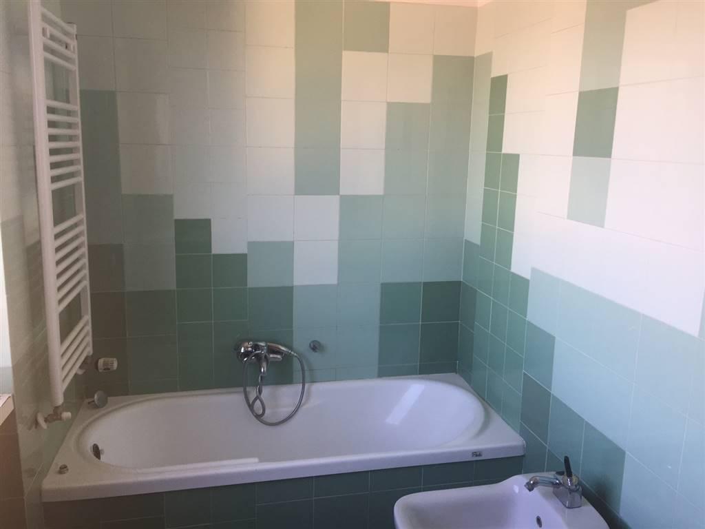 Appartamento in affitto a Cecina, 2 locali, prezzo € 450 | CambioCasa.it