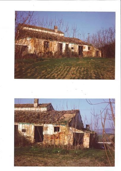 Terreno Agricolo in vendita a Mosciano Sant'Angelo, 9999 locali, zona Zona: Montone, prezzo € 80.000 | CambioCasa.it