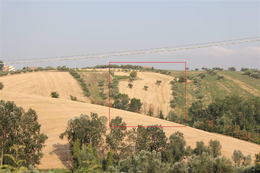 Terreno Agricolo in vendita a Mosciano Sant'Angelo, 9999 locali, zona Località: MAGGI, prezzo € 45.000 | CambioCasa.it