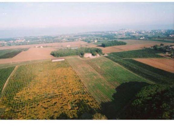 Azienda Agricola in vendita a Castiglione del Lago, 9999 locali, zona uolo, prezzo € 2.200.000   PortaleAgenzieImmobiliari.it