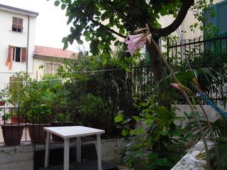 Appartamento in affitto a La Spezia, 2 locali, zona Località: COLLI, prezzo € 400 | PortaleAgenzieImmobiliari.it