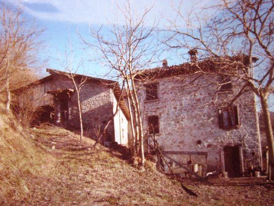 terratetto