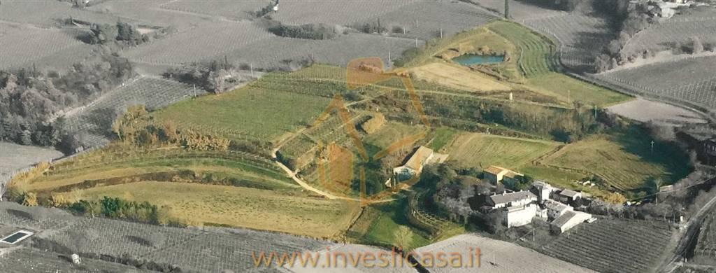 Terreno Agricolo in vendita a Lazise, 9999 locali, zona Località: COLÀ, Trattative riservate | CambioCasa.it