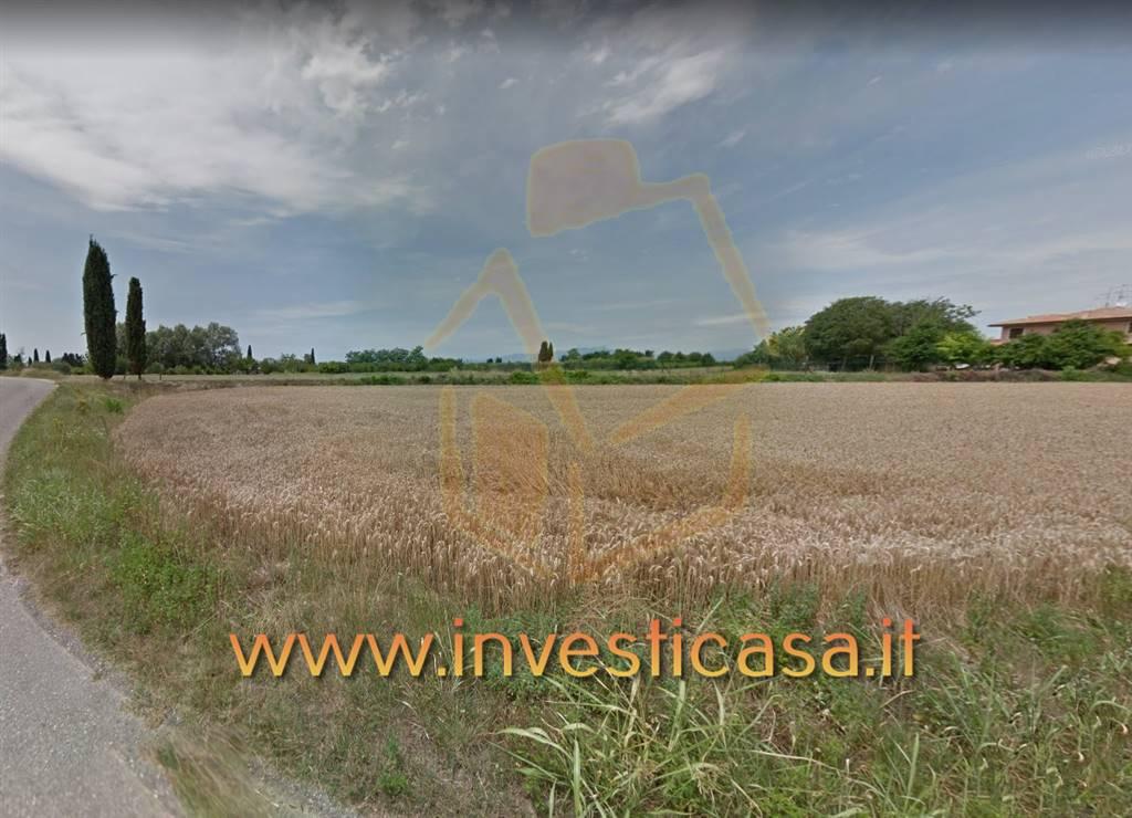 Terreno Agricolo in vendita a Lazise, 9999 locali, zona Località: PACENGO DI LAZISE, prezzo € 45.000 | CambioCasa.it