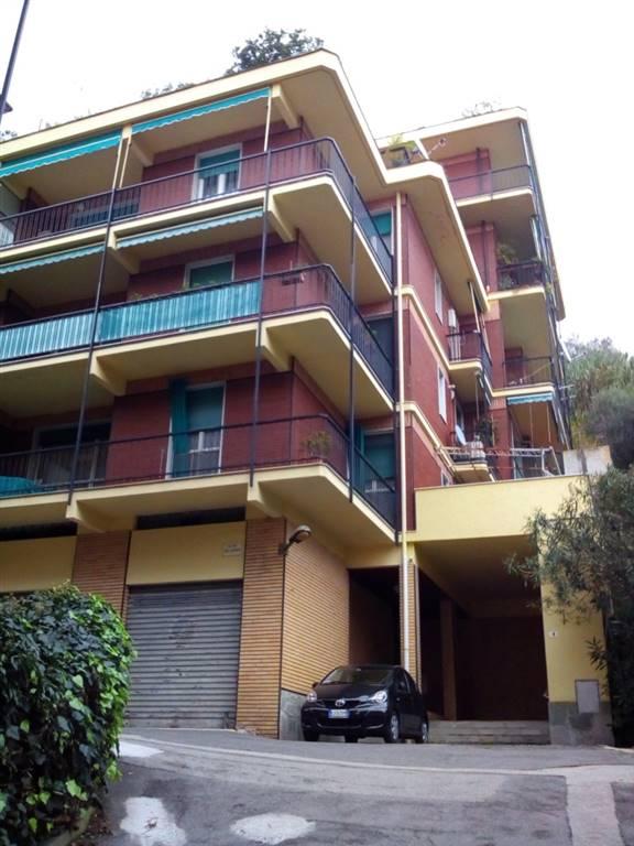 Appartamento in affitto a Rapallo, 2 locali, prezzo € 650 | PortaleAgenzieImmobiliari.it