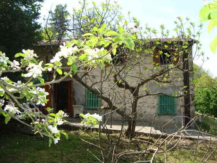 Terratetto, San Godenzo, abitabile
