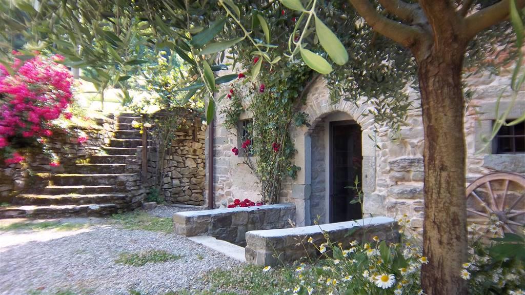 Loft / Openspace in affitto a San Godenzo, 3 locali, zona Zona: Castagno d'Andrea, Trattative riservate | CambioCasa.it