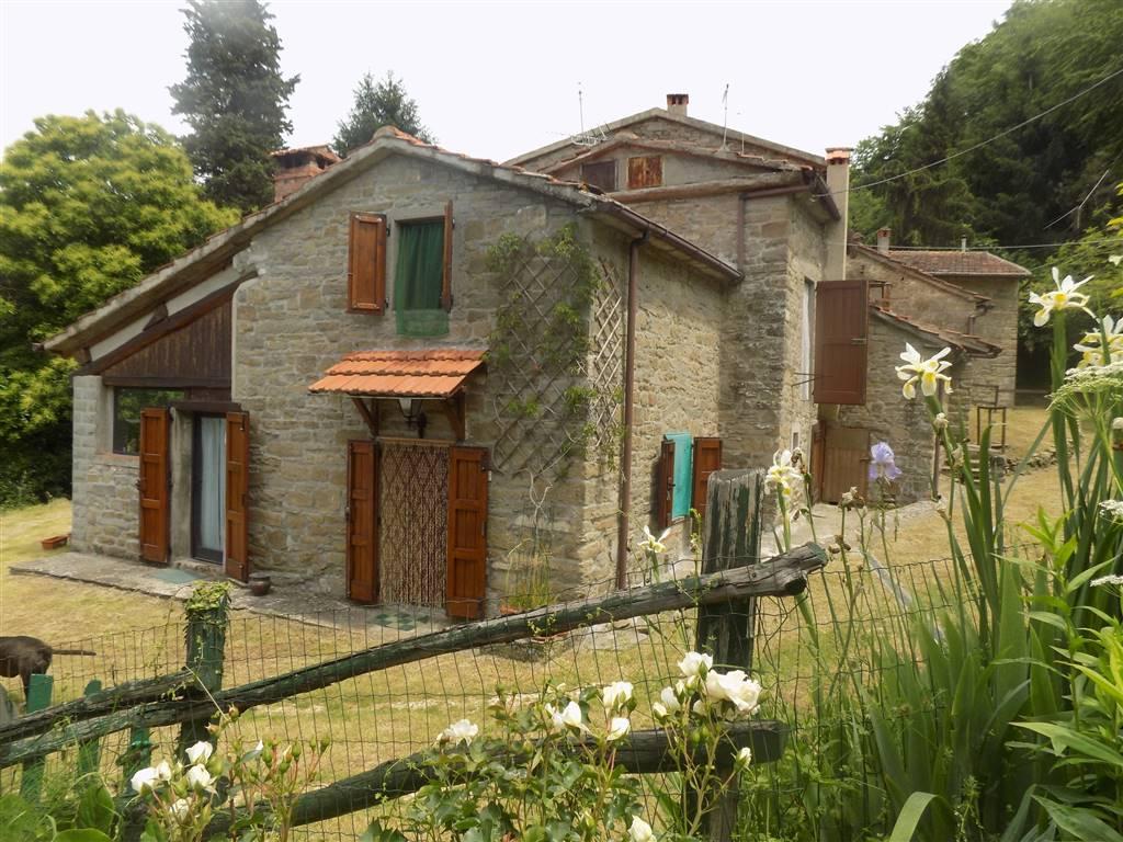 Soluzione Indipendente in vendita a San Godenzo, 5 locali, zona Località: CAVALLINO, prezzo € 120.000   CambioCasa.it