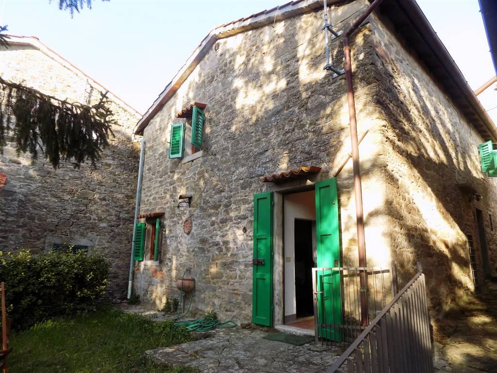 Soluzione Indipendente in affitto a San Godenzo, 4 locali, zona Zona: Petrognano, prezzo € 1.200   CambioCasa.it