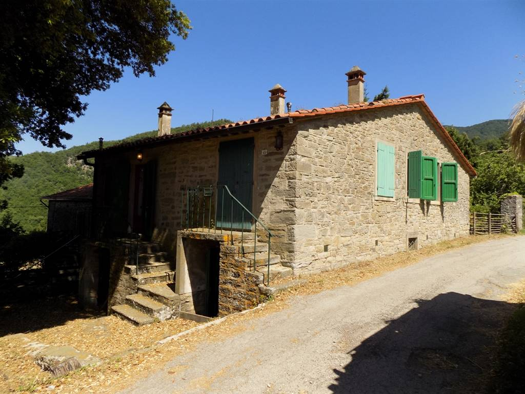 Main Farmhouse in SAN GODENZO