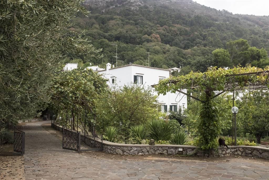 Case a anacapri in vendita e affitto for Case in affitto arredato boscoreale