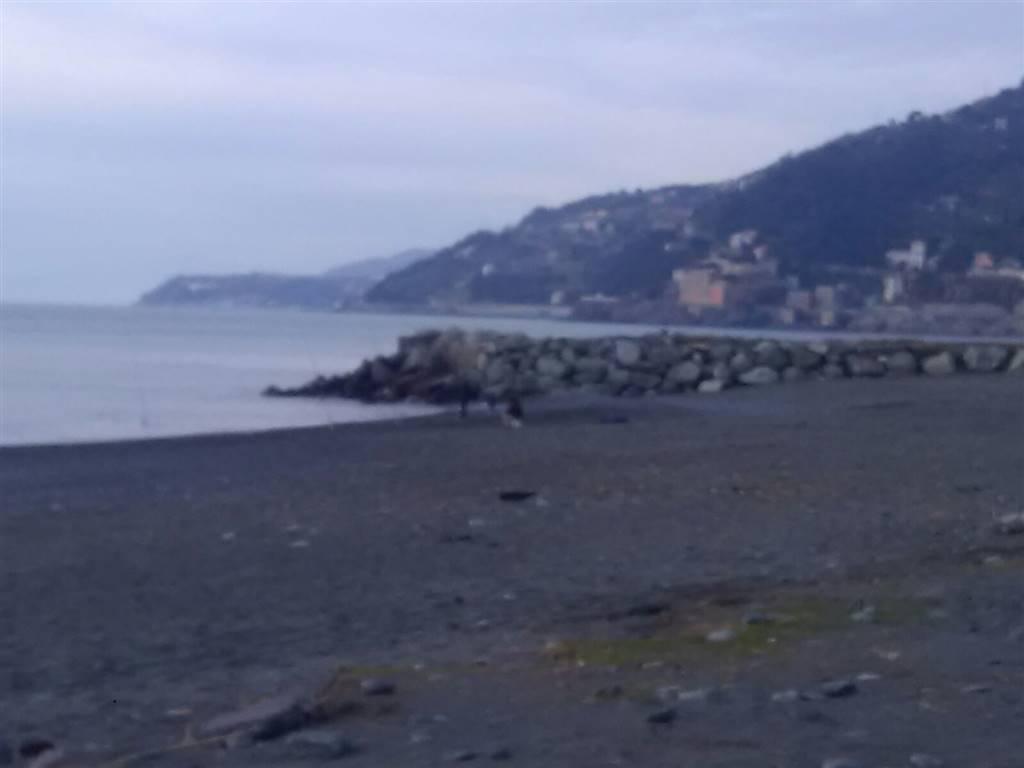 Trilocale, Voltri, Genova, abitabile
