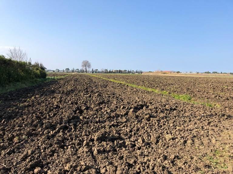 Terreno Agricolo in vendita a Capaccio, 9999 locali, zona Zona: Gromola, prezzo € 32.000 | CambioCasa.it