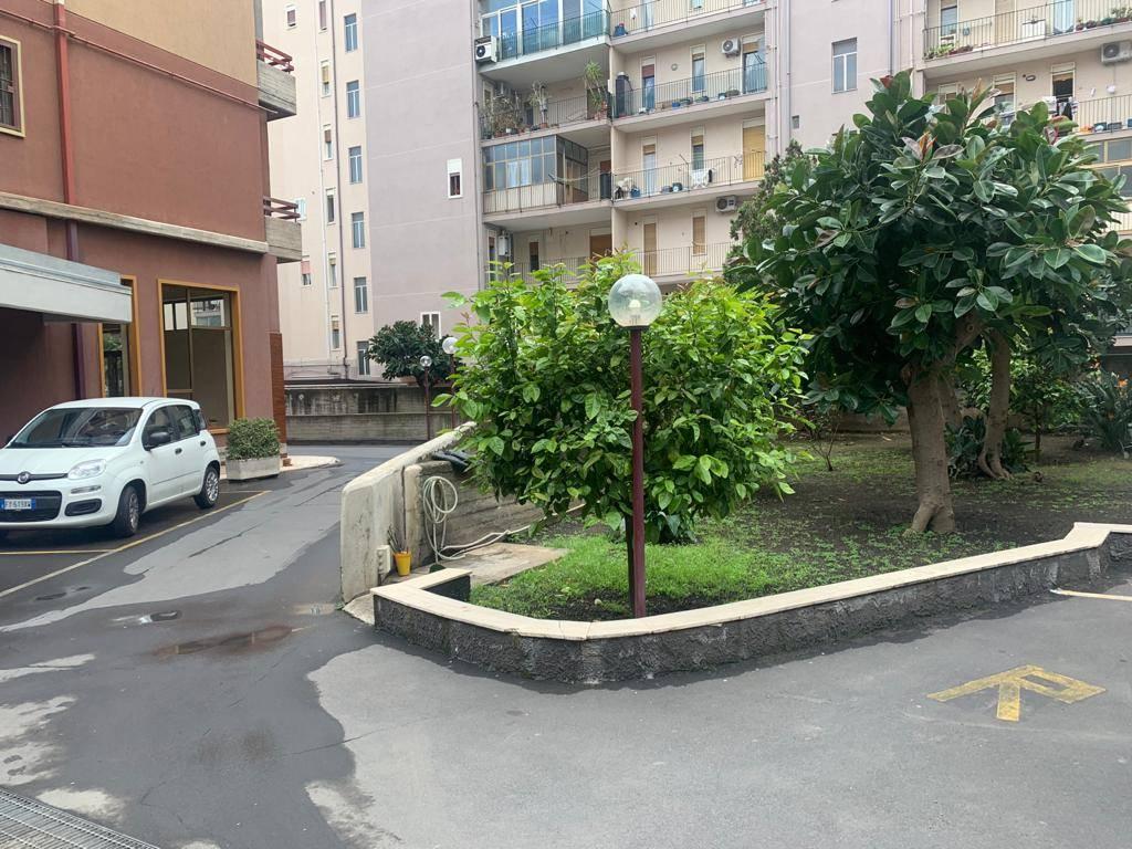 Foto ID 17529663