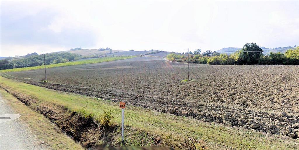 Terreno Agricolo in vendita a Bertinoro, 9999 locali, zona Zona: Fratta Terme, prezzo € 209.000   CambioCasa.it