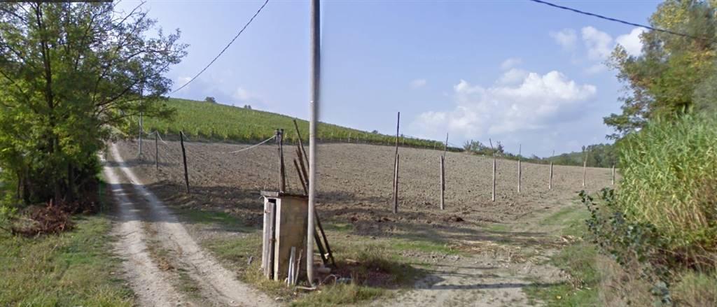 Azienda Agricola in vendita a Bertinoro, 1 locali, zona Zona: Fratta Terme, prezzo € 550.000 | CambioCasa.it