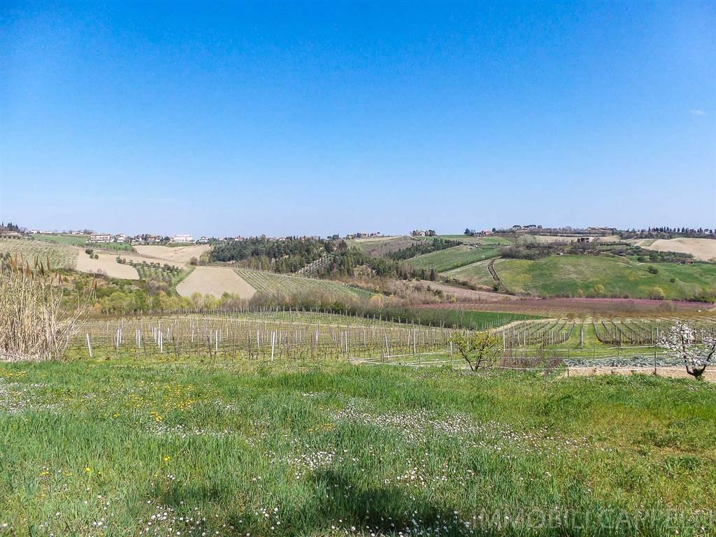 Terreno Agricolo in vendita a Bertinoro, 9999 locali, zona Zona: Bracciano, prezzo € 280.000   CambioCasa.it