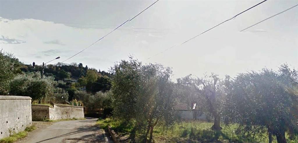 Terreno Agricolo in vendita a Matera, 9999 locali, prezzo € 7.000 | CambioCasa.it